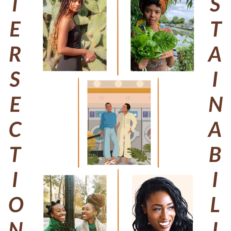 The New Faces of the Sustainability Movement